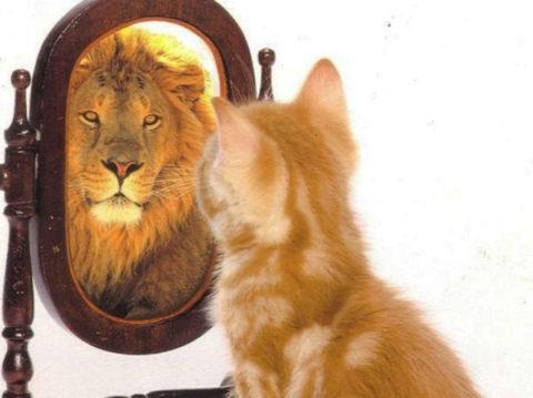 Autoestima, como aprender a mejorarla.