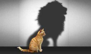 psicóloga autoestima en valencia