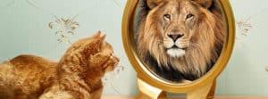 psicóloga autoestima valencia